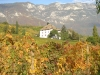 Weinreise Südtirol Oktober 2006