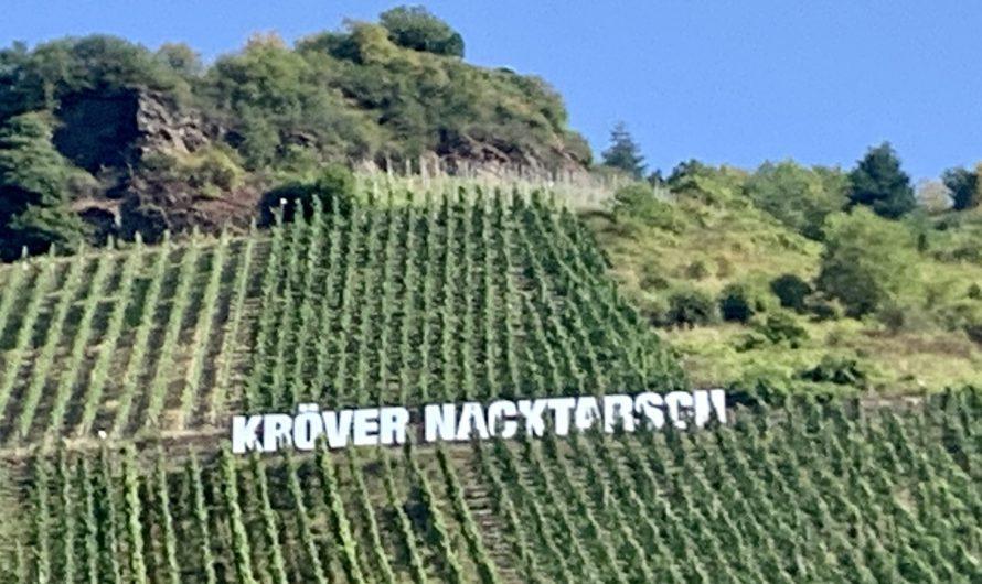 Weinbaugebiete Mosel und Mittelrhein – eine Reise wert!